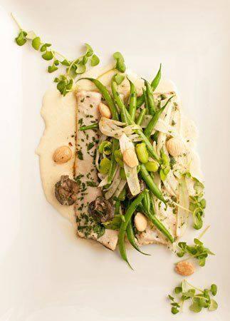 Brook Trout, Wild Burgundy Snails, Fennel, Spring Vegetables, & Marcona Almond Cream