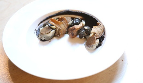 Whelk and Snails with Matsutake Mushrooms, Burgundy Truffles and Spruce
