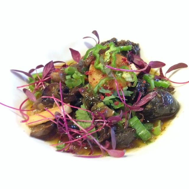 Escargot, Black Garlic Chimmichurri, Heart of Palm, and Shisito Pepper.