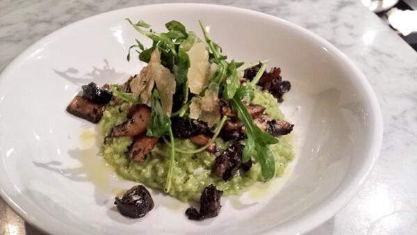 Herb Carolina Gold Risotto with Sautéed Wild Mushrooms, Burgundian Escargot, Arugula Salad & Shaved Parmesan.